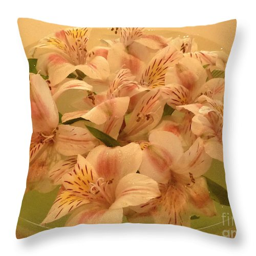 Nature Throw Pillow featuring the photograph Floating Alstroemerias - Warm And Sensual by Lucyna A M Green