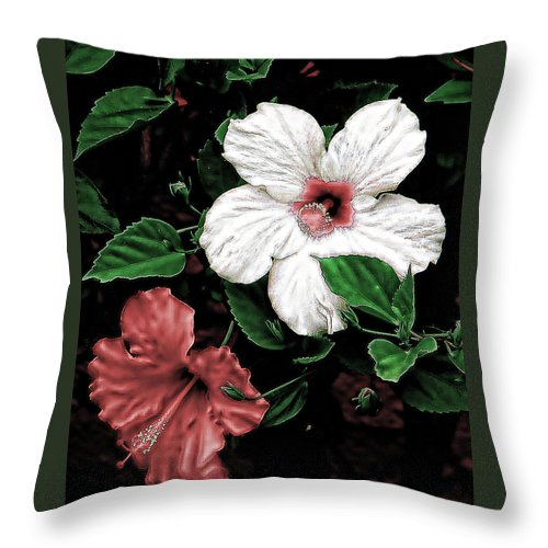 Flowers Throw Pillow featuring the photograph Floral by Athala Carole Bruckner