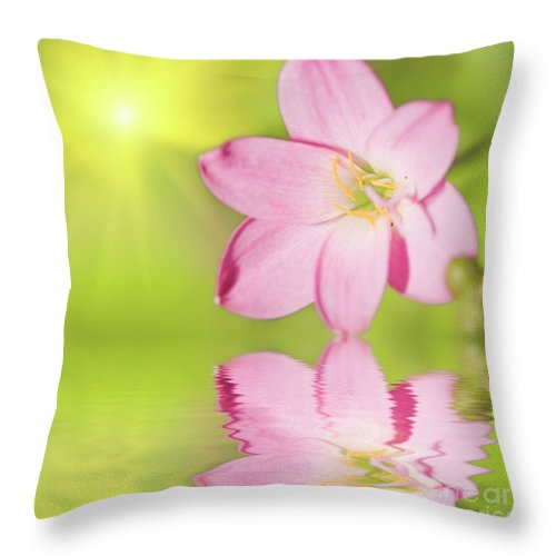 Floral Throw Pillow featuring the photograph Floral Background by MotHaiBaPhoto Prints