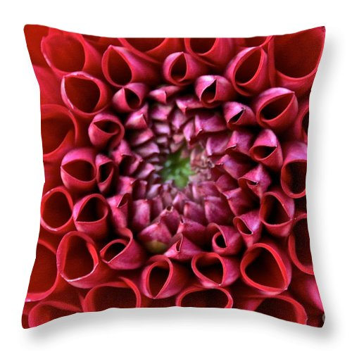 Landscape Throw Pillow featuring the photograph Floral Honeycomb by Susan Herber