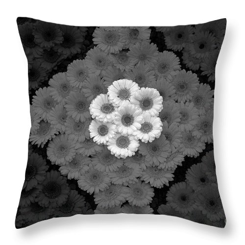 Floral Throw Pillow featuring the photograph Floral Pattern by Mike Nellums