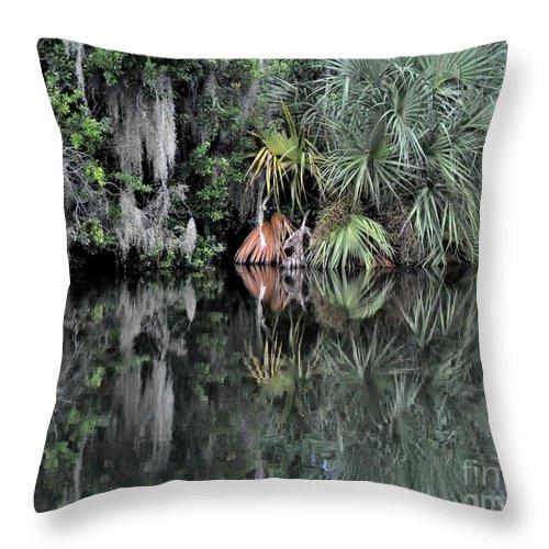 Palmetto Throw Pillow featuring the photograph Florida Bayou by John Black