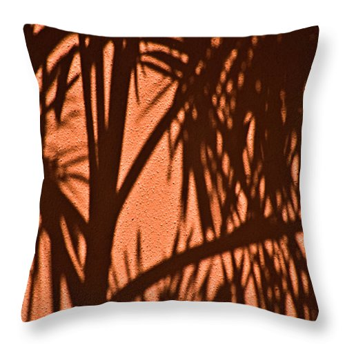 Palm Frond Throw Pillow featuring the photograph Florida Palm Shadow by Carolyn Marshall