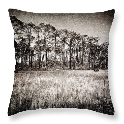 Art Throw Pillow featuring the photograph Florida Pine 2 by Skip Nall