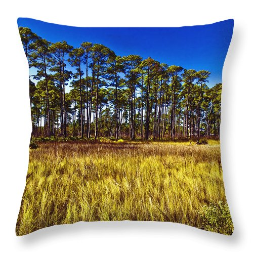 Art Throw Pillow featuring the photograph Florida Pine 3 by Skip Nall