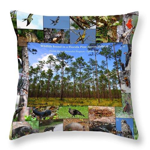 Florida Wildlife Collage Throw Pillow featuring the photograph Florida Wildlife Photo Collage by Barbara Bowen