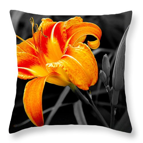 Throw Pillow featuring the photograph Flower 24 by Burney Lieberman