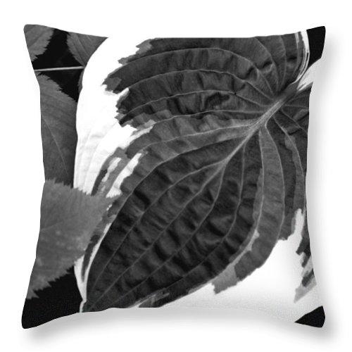 Throw Pillow featuring the photograph Flower 27 by Burney Lieberman
