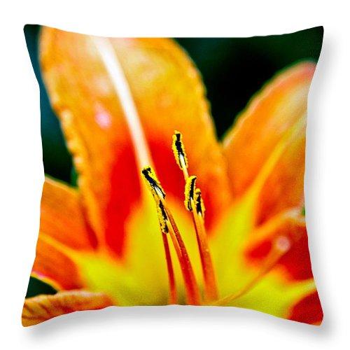 Throw Pillow featuring the photograph Flower 28 by Burney Lieberman