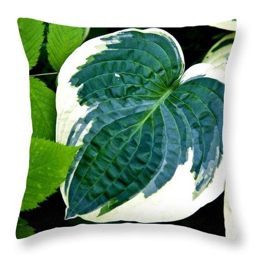Throw Pillow featuring the photograph Flower 29 by Burney Lieberman