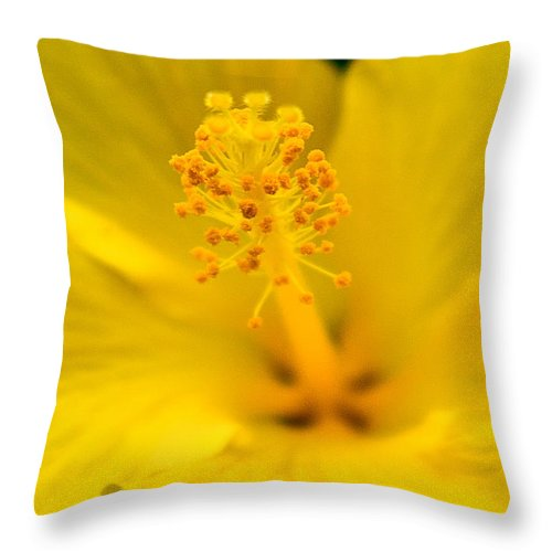 Yellow Flower Throw Pillow featuring the photograph Flower 7 by Burney Lieberman