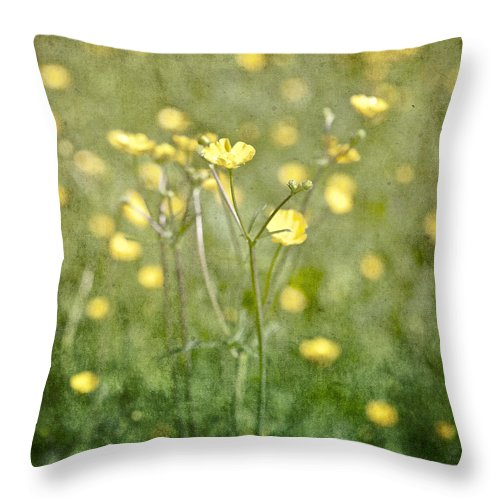 Flower Throw Pillow featuring the photograph Flower Of A Buttercup In A Sea Of Yellow Flowers by Joana Kruse