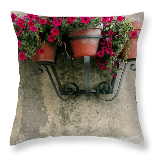Flower Throw Pillow featuring the photograph Flower Pots On Old Wall by Mike Nellums