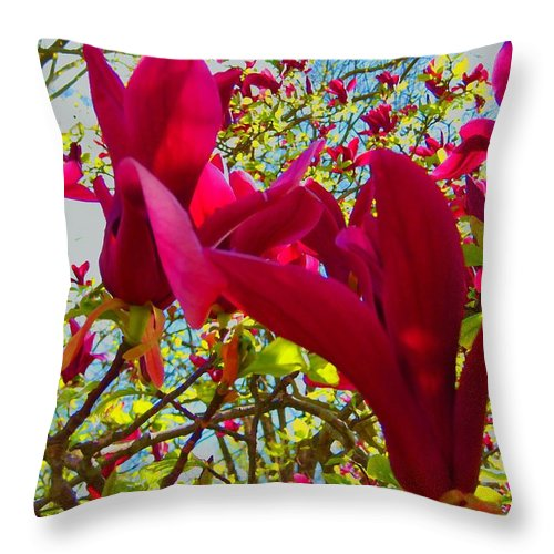 Tree Throw Pillow featuring the photograph Flower-tree-the Tulip Tree by Susan Carella