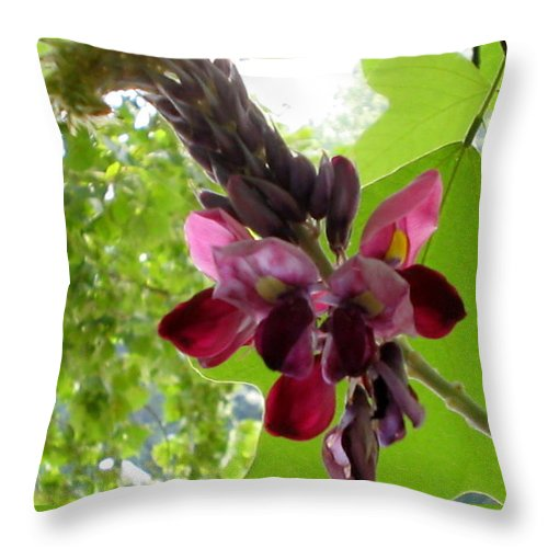 Landscapes Throw Pillow featuring the photograph Flowering Vine by April Patterson