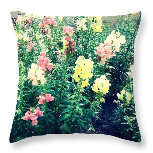 Photography Throw Pillow featuring the photograph Flowers At Noon by Shelia Bull