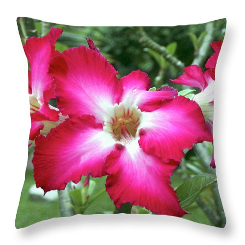 Flowers Throw Pillow featuring the photograph Flowers Bangkok Thailand by Paul Shefferly