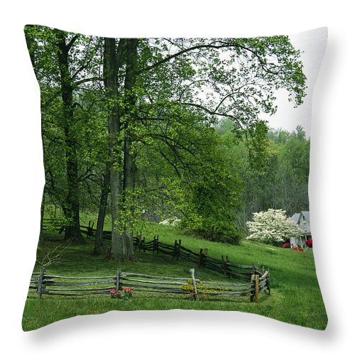 Plants Throw Pillow featuring the photograph Flowers Bloom Near An Old Farm In Rural by Annie Griffiths