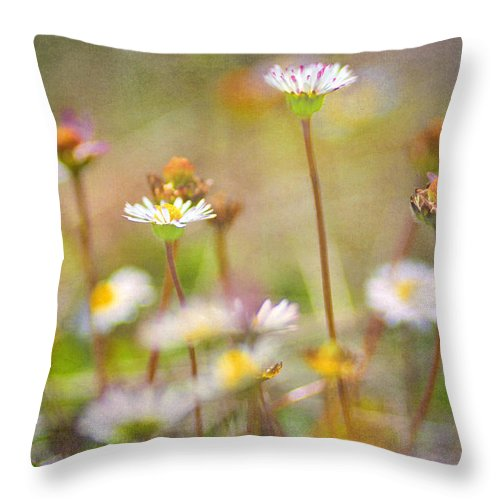 Flowers Throw Pillow featuring the photograph flowers endemic at Sierra Nevada by Guido Montanes Castillo