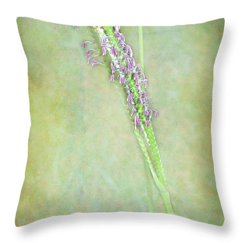Grass Throw Pillow featuring the photograph Flowers Of The Grass by Judi Bagwell