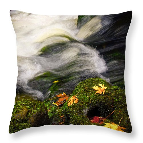 River Throw Pillow featuring the photograph Flowing Stream by Steve McKinzie