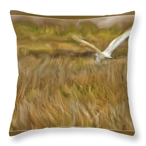 Art Photography Throw Pillow featuring the photograph Flying Home by Blake Richards