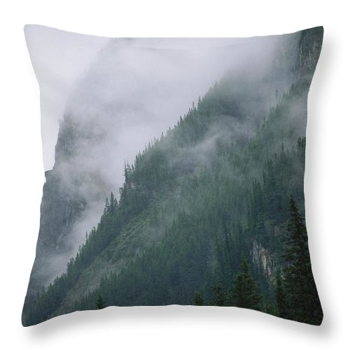 North America Throw Pillow featuring the photograph Fog Blankets Spruce Trees In Yoho by Michael Melford