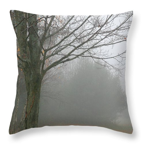 Fog Throw Pillow featuring the photograph Foggy Fall by Burney Lieberman
