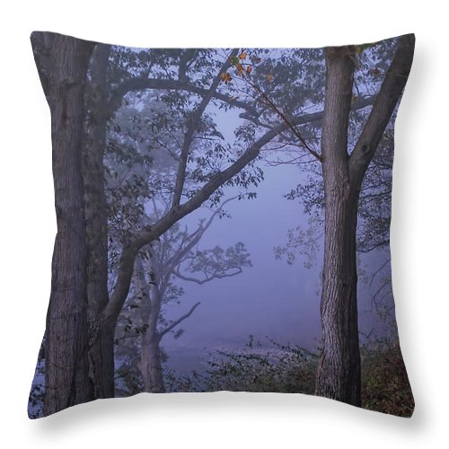 Fog Throw Pillow featuring the photograph Foggy Fall Morning by Pamela Baker