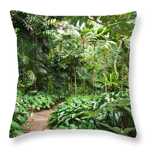 Garden Throw Pillow featuring the photograph Follow The Path by Bob and Nancy Kendrick