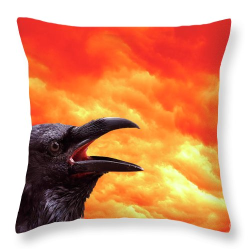 Foreboding Throw Pillow featuring the photograph Foreboding by Michal Boubin