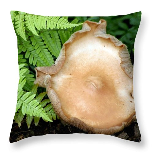 Forest Throw Pillow featuring the photograph Forest Floor by Living Color Photography Lorraine Lynch