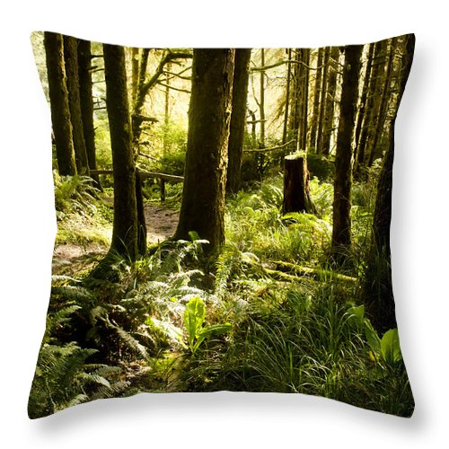 Oregon Throw Pillow featuring the photograph Forest For The Trees by Heather Applegate