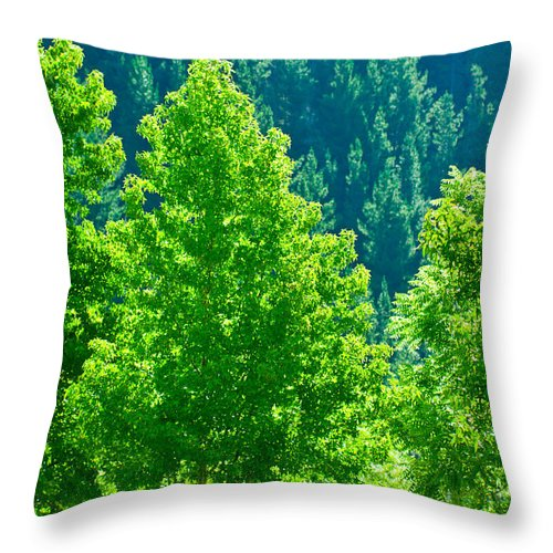 Background Throw Pillow featuring the photograph Forest Illuminates In The Sunlight by U Schade