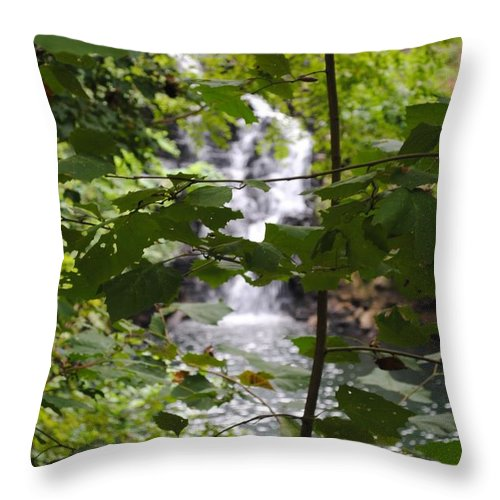 Waterfall Throw Pillow featuring the photograph Forest Waterfall by Jost Houk