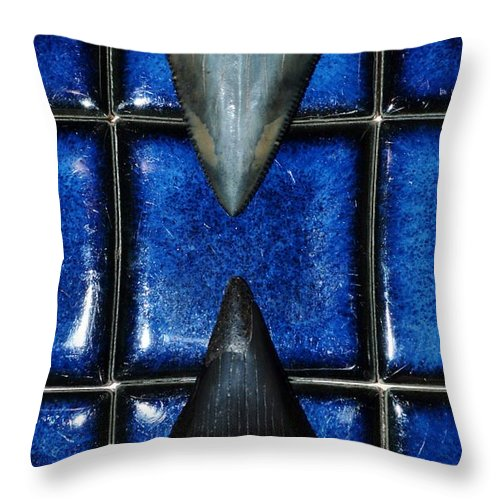 Close Up; Fossil; Great White Shark; Tooth; Lower; Jaw; Black; Upper; South Africa; Cape Town; Enamel; Root; Blade; Tip; Milnerton Beach; Atlantic Ocean; Hobby; Old; Throw Pillow featuring the photograph Fossil Great White Shark Teeth by Werner Lehmann