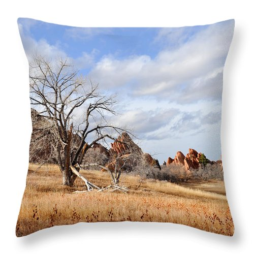 Fountain Valley Throw Pillow featuring the photograph Fountain Valley by Cheryl McClure