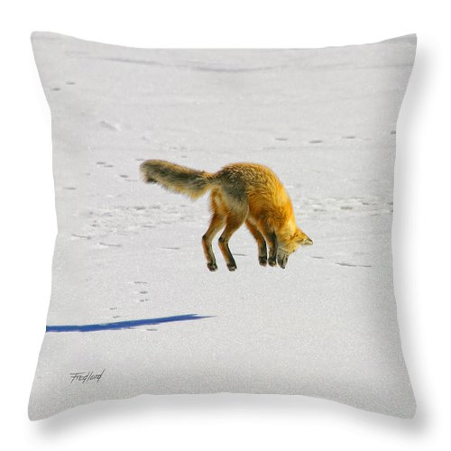 Fox Throw Pillow featuring the photograph Fox Triptych Two by Fred J Lord