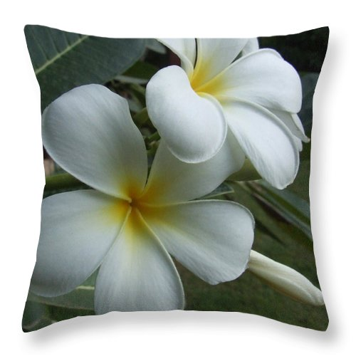 Thailand Throw Pillow featuring the photograph Fragrant Memories by Lyle Barker
