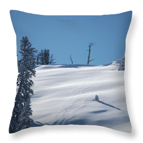 Snow Throw Pillow featuring the photograph Fresh Powder by Lucy Bounds