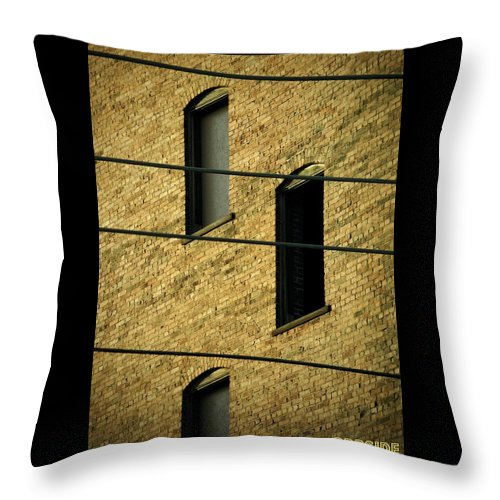 Abandoned Throw Pillow featuring the photograph Bass Guitar Frets by Chris Berry