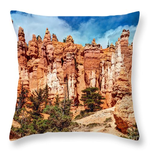 Photograph Throw Pillow featuring the photograph From The Bottom Up - 11x14 by Bob and Nancy Kendrick