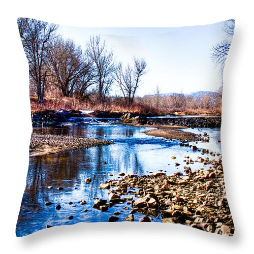 Denver Throw Pillow featuring the photograph From Under The Bridge by David Patterson
