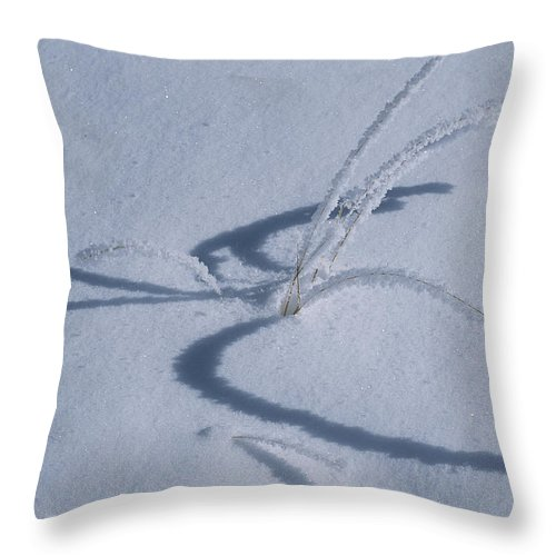 United States Of America Throw Pillow featuring the photograph Frost Covered Grasses In A Snowy by Tom Murphy