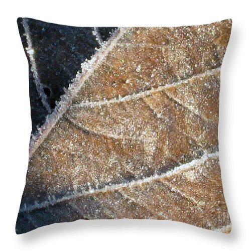 Frost Throw Pillow featuring the photograph Frosted Leaf by Ellen Miffitt