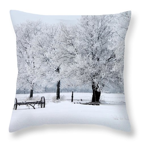 Frosty Throw Pillow featuring the photograph Frosty Morning On Old Wagon Wheels by Jack Schultz