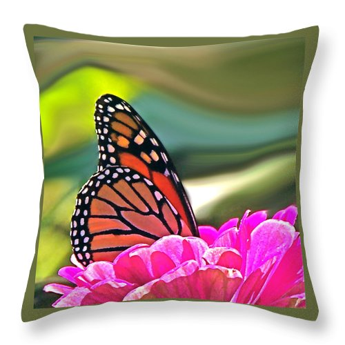 Nature Abstract Throw Pillow featuring the photograph Fueling Up To Ride The Wind by Byron Varvarigos