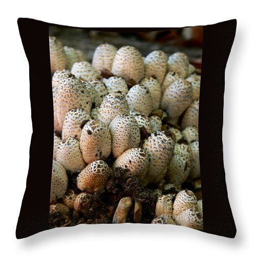 Autumn Throw Pillow featuring the photograph Fungi by Angela Wright