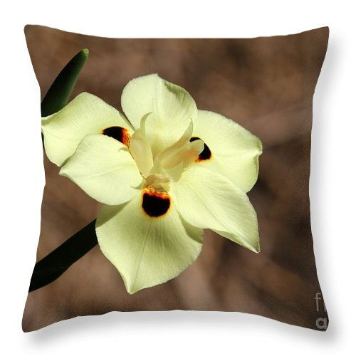 Flower Throw Pillow featuring the photograph Funny Face Flower by Sabrina L Ryan
