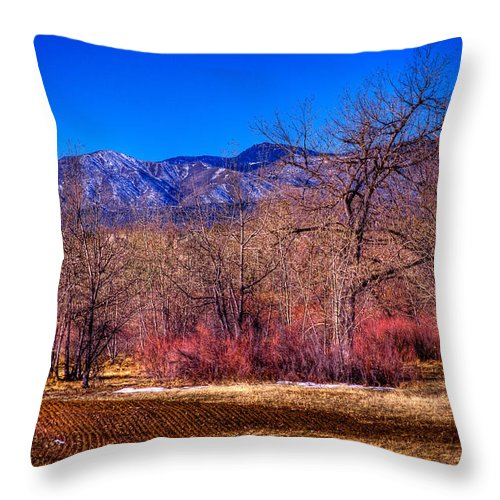 Denver Throw Pillow featuring the photograph Furrowed Field At South Platte Park by David Patterson